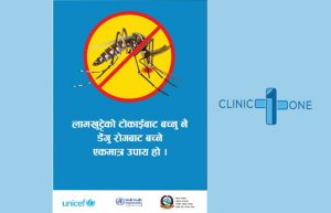 Dengue in kathmandu, treatment symptoms and prevention