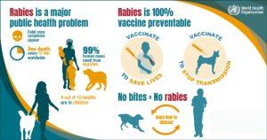 Rabies Vaccine in kathmandu