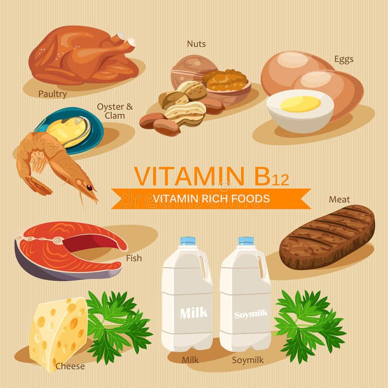 Vitamin B12 rich foods to eat in Nepal to prevent Vitamin B-12 deficiency